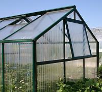 salatgurken anbauen im gewächshaus